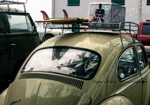Beetle Surf